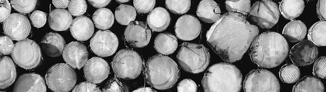 Holzverpackungen aller Art | ADLERPACK
